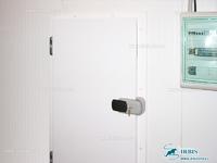 Холодильная дверь для холодильной камеры РДО (КС)